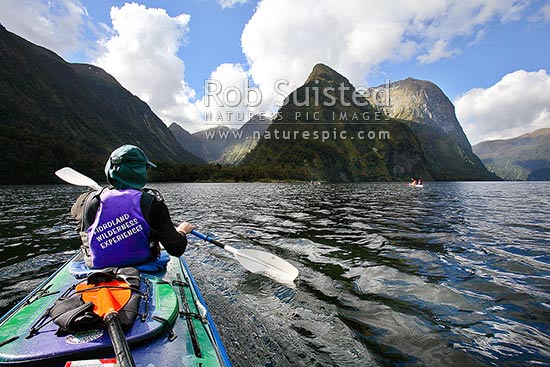 Wilderness sea kayaking in Hall Arm of Doubtful Sound. Fiordland National Park. Double boats. Commander Peak (1258m) centre right, Doubtful Sound, Fiordland, Southland District, Southland Region, New Zealand (NZ) stock photo.