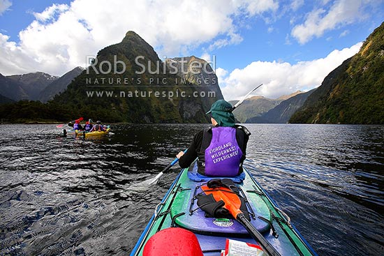 Wilderness sea kayaking in Hall Arm of Doubtful Sound. Fiordland National Park. Double boats. Commander Peak (1258m) centre, Doubtful Sound, Fiordland, Southland District, Southland Region, New Zealand (NZ) stock photo.
