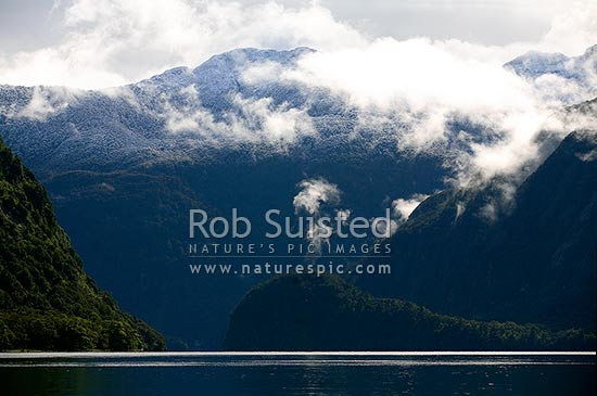 Early morning calm in Hall Arm of Doubtful Sd, Fiordland National Park. Fresh snow dusting on mountains with mist and clouds rising off beech forest, Doubtful Sound, Fiordland, Southland District, Southland Region, New Zealand (NZ) stock photo.