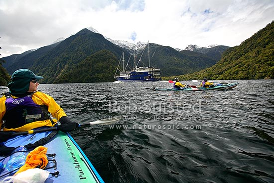 Real Journeys vessel Fiordland Navigator in Doubtful Sound, passing wilderness sea kayakers, Doubtful Sound, Fiordland, Southland District, Southland Region, New Zealand (NZ) stock photo.