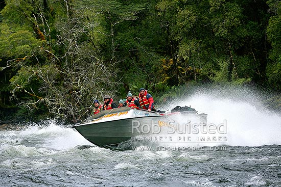 Johan Groters driving tourist visitors in the W-Jet boat trip through rapids on the Wairaurahiri River, Waitutu Forest, Fiordland, Southland District, Southland Region, New Zealand (NZ) stock photo.