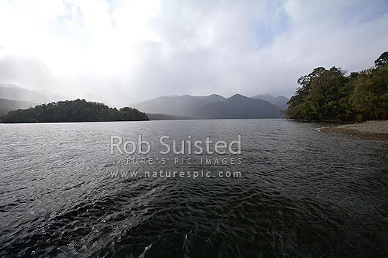 The dark waters of Lake Hauroko, New Zealand's deepest lake at 462 metres, Fiordland National Park, Southland District, Southland Region, New Zealand (NZ) stock photo.