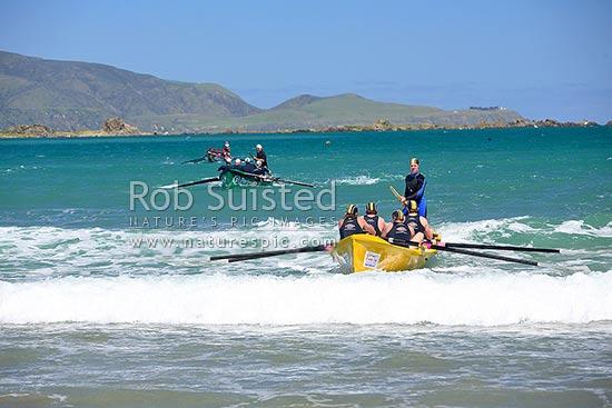 Wellington Surf Life Saving Surf Boat Races At Lyall Bay Wellington