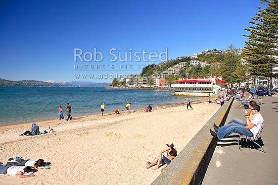 People Relaxing And Enjoying Oriental Bay Beach Parade On A Fine Day At Sart Of