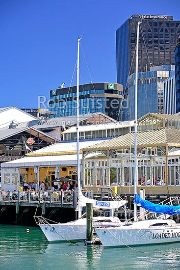 Wellingtonians enjoying a meal at the waterfront, Queens Wharf, Shed 5 and Docksider. Yachts moored in foreground, Wellington, Wellington City District, Wellington Region, New Zealand (NZ) stock photo.