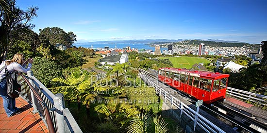 Panorama from top of the Wellington Cable car over the city and harbour from Botanical gardens at Kelburn, Wellington, Wellington City District, Wellington Region, New Zealand (NZ) stock photo.