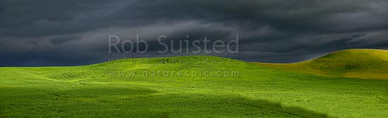 Dark moody stormy skies brewing with rainbow above lush summer grass farmland in Central Hawke's Bay, Dannevirke, Tararua District, Manawatu-Wanganui Region, New Zealand (NZ) stock photo.