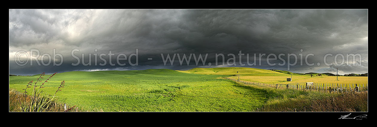 Image of Dark moody stormy skies brewing above lush summer grass farmland lit by evening light, in Central Hawke's Bay. Panoramic view, Dannevirke, Tararua District, Manawatu-Wanganui Region, New Zealand (NZ) stock photo image