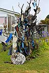Shoes on a tree, Kaipara
