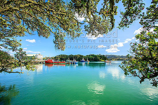 Mangonui Wharf and harbour viewed under Pohutukawa trees, Mangonui, Far North District, Northland Region, New Zealand (NZ) stock photo.