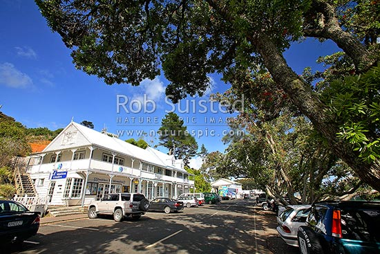 Main street waterfront of Mangonui under Pohutukawa trees (Metrosideros excelsa), Mangonui, Far North District, Northland Region, New Zealand (NZ) stock photo.