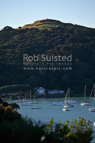Historic Rangikapiti Pa (Maori fortification) perched above yachts in Mill Bay, Mangonui Harbour, Doubtless Bay, Mangonui, Far North District, Northland Region, New Zealand (NZ) stock photo.