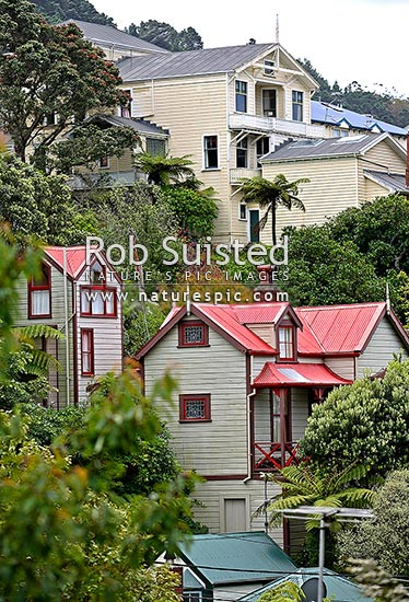 Old historic early houses of Wellington - Thorndon and Tinakori area - Glenbervie Tce etc, Wellington, Wellington City District, Wellington Region, New Zealand (NZ) stock photo.