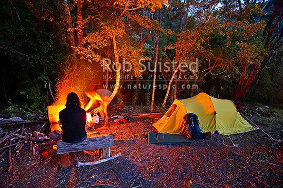 Night time tent campsite in forest with roaring open campfire. Orongorongo River Valley (Remutaka, Rimutaka), Remutaka Forest Park, Hutt City District, Wellington Region, New Zealand (NZ) stock photo.
