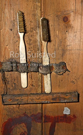 Old whalebone and baleen bristle toothbrushes found above bunk in Captain Robert Falcon Scott's Cape Evans hut, Cape Evans, Ross Island, McMurdo Sound, Antarctica Region, Antarctica stock photo.