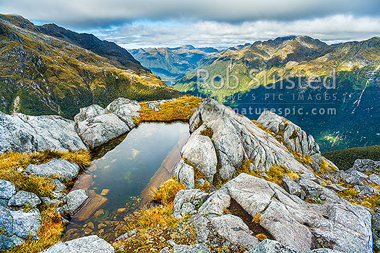 Alpine tarn or lake on granite ridge high above the North Fiord of Lake Te Anau and the Glaisnock River Valley, on alpine tussock tops. Franklin Mountains, Fiordland National Park, Southland District, Southland Region, New Zealand (NZ) stock photo.