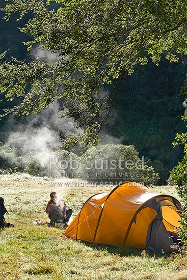 Tramper making breakfast at tent camp in forest clearing on a dew covered morning in autumn. Steam rising from the billy, Tararua Forest Park, Masterton District, Wellington Region, New Zealand (NZ) stock photo.