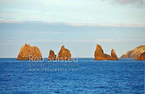 Rock stacks off the south eastern end of the Snares Islands, Snares Islands, NZ Sub Antarctic District, NZ Sub Antarctic Region, New Zealand (NZ) stock photo.