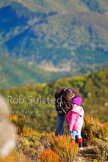 Outdoor walkers, father dressing daughter for cold winds near alpine summit of the Remutaka (Rimutaka) Summit Trig walk (725m) above the Remutaka (Rimutaka) Road summit, Remutaka, Upper Hutt City District, Wellington Region, New Zealand (NZ) stock photo.
