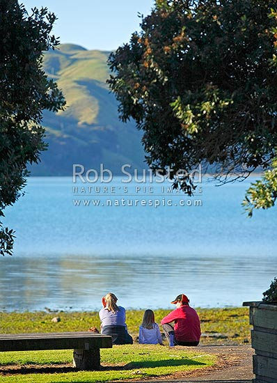 A family sitting and talking on grass next to the sea and pohutukawa trees, Pauatahanui Inlet, Porirua City District, Wellington Region, New Zealand (NZ) stock photo.