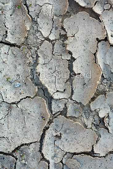 Dry drought affected mud and earth that has dried and cracked in the hot sun, New Zealand (NZ) stock photo.