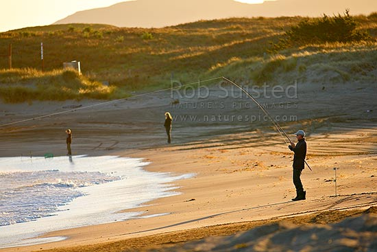 Recreational fishermen surfcasting fishing from beach in late evening light. Riversdale Beach, Masterton District, New Zealand (NZ) stock photo.