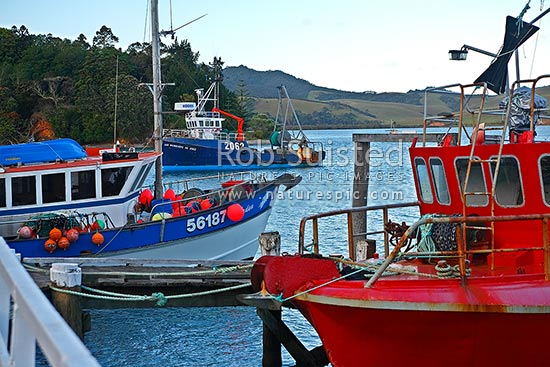 Fishing boasts in harbour and moored to Mangonui Wharf, Mangonui, Far North District, Northland Region, New Zealand (NZ) stock photo.