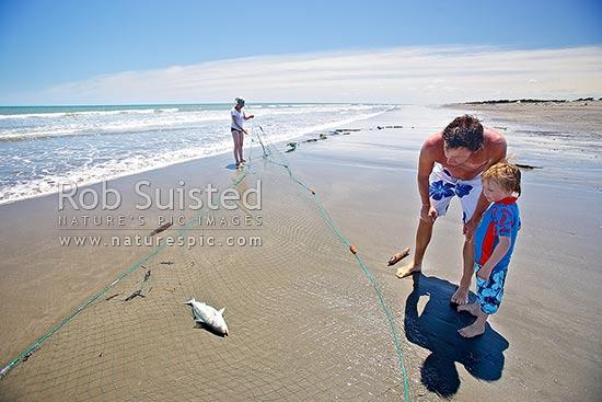 Summer drag net fishing for kahawai on te horo beach for Drag net fishing