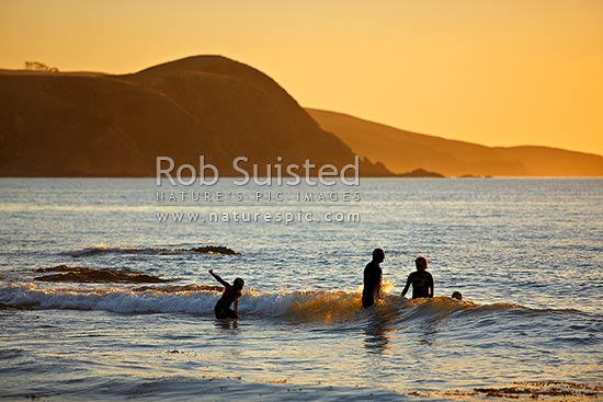Family playing in sea and surf in late evening as sun sets, Plimmerton, Porirua City District, Wellington Region, New Zealand (NZ) stock photo.