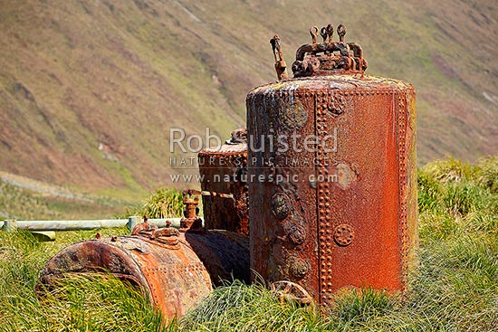 Steam digesters / digestors used by Joseph Hatch to render oil from Elephant seals and penguins until 1919, Macquarie Island, NZ Sub Antarctic District, NZ Sub Antarctic Region, Australia stock photo.