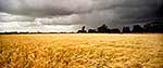 Stormy sky of farmland