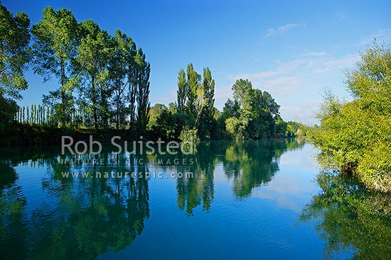 Waikato River passing through willow tree lined banks and farmland, Mihi, Rotorua, Rotorua District, Bay of Plenty Region, New Zealand (NZ) stock photo.