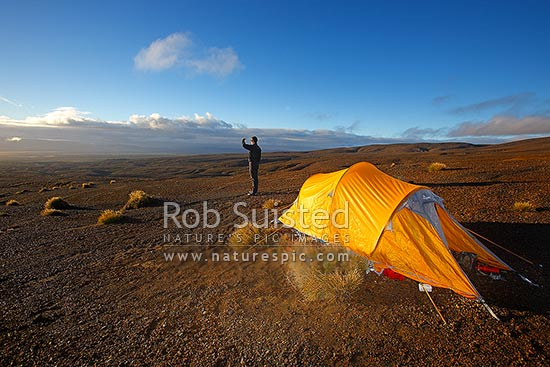 Trampers tent camp at dawn on the Round the Mountain Track of Mount Ruapehu. The barren Rangipo Desert landscape, Mt Ruapehu, Ruapehu District, Manawatu-Wanganui Region, New Zealand (NZ) stock photo.