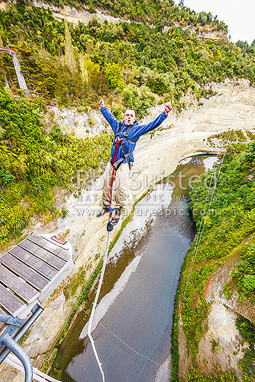 Bungy jumper jumping backwards off the 80 metre (260ft) Mokai Gravity Canyon jump above the Rangitikei River gorge from the Mokai Bridge, Mokai, Taihape, Rangitikei District, Manawatu-Wanganui Region, New Zealand (NZ) stock photo.