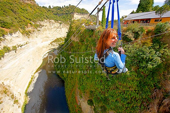 Woman being winched back up after a giant bridge swing off the 80 metre high (260ft) Mokai Gravity Canyon bridge Rangitikei River gorge with 50 metre freefall, Mokai, Taihape, Rangitikei District, Manawatu-Wanganui Region, New Zealand (NZ) stock photo.