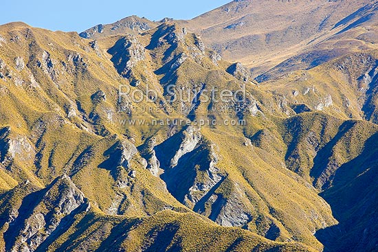 Tussock clad ridges, valleys and hills of the Harris Mountains above Macetown, Arrowtown, Queenstown Lakes District, Otago Region, New Zealand (NZ) stock photo.