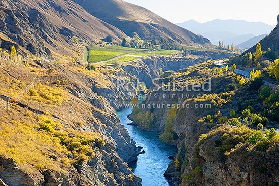 Kawarau River Gorge near Queenstown travelling through barren hills and vineyards - Chard Farm. Autumn colours, Gibbston, Queenstown Lakes District, Otago Region, New Zealand (NZ) stock photo.