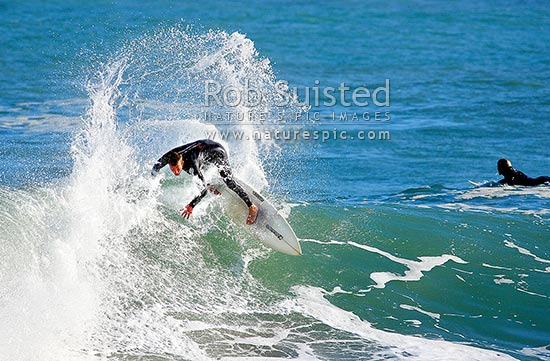 Surfers surfing waves at Lyall Bay, Wellington's South Coast, Wellington, Wellington City District, Wellington Region, New Zealand (NZ) stock photo.