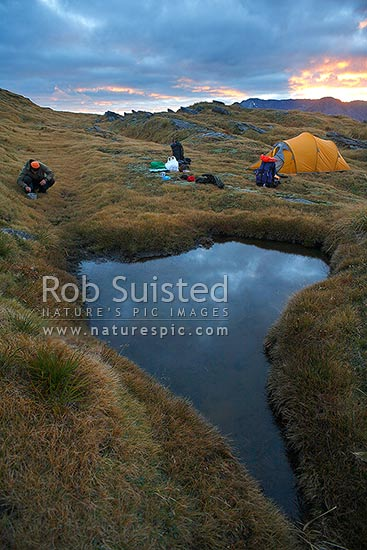 Tramper preparing food for breakfast at sunrise. Alpine tent camp next to mountain tarn, high on the Thomas Range, Haast, Westland District, West Coast Region, New Zealand (NZ) stock photo.