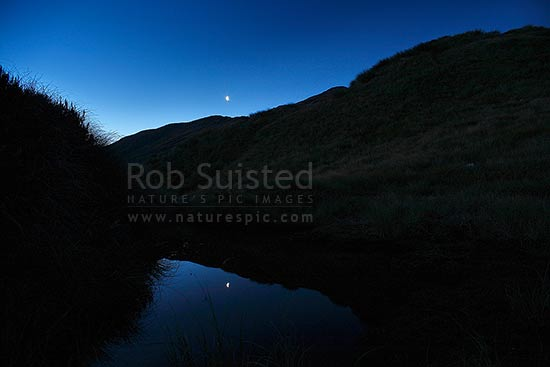 Waning Crescent moon reflected in mountain tarn lake at dusk, Haast, Westland District, West Coast Region, New Zealand (NZ) stock photo.