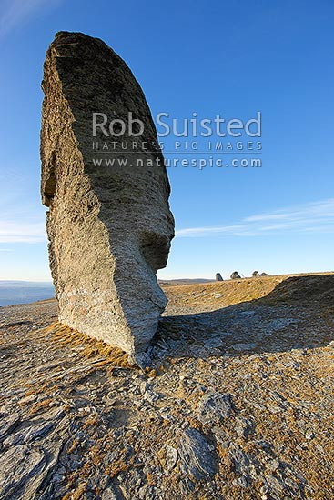 Obelisk, a well known rock outcrop landmark on the Old Man Range (1682m), looking east over Central Otago and Clutha country, Alexandra, Central Otago District, Otago Region, New Zealand (NZ) stock photo.