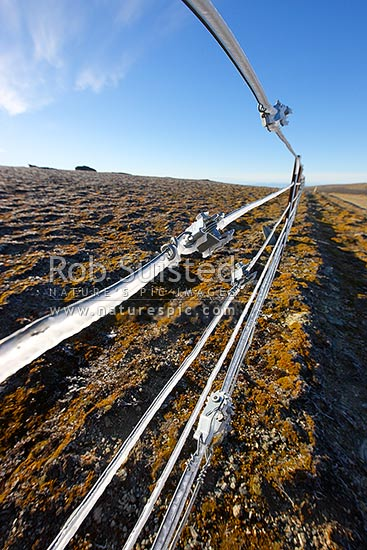 High country farm fenceline wires encrusted with ice from freezing cloud and frost. Old Man Range in autumn. 1600 metres high. Fence tensioners, Alexandra, Central Otago District, Otago Region, New Zealand (NZ) stock photo.