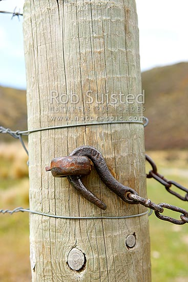 Old farm gate chain hook or gate fastener and post, New Zealand (NZ) stock photo.