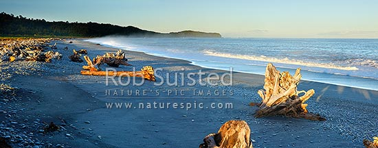 Gillespies Beach on the South Westland coast. Panorama of driftwood, pingao grass, rainforest and waves in morning light, Gillespies Beach, Westland District, West Coast Region, New Zealand (NZ) stock photo.