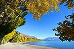 Autumn at Lake Wanaka