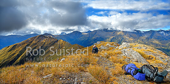 Tramper or hunter glassing on the summit of Mount Swindle (1588m) on the Thomas Range. Windrow Spur left, Roaring Billy valley behind, Haast, Westland District, West Coast Region, New Zealand (NZ) stock photo.