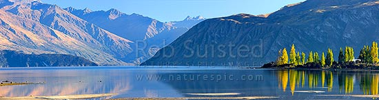 Lake Wanaka panorama with autumn coloured poplar trees reflecting in lake. Bremner Bay. Minaret Peaks distance centre, Lake Wanaka, Queenstown Lakes District, Otago Region, New Zealand (NZ) stock photo.