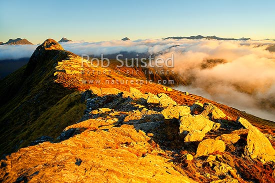 Alpine sunset over the Thomas Range, with sea mist rolling in. Mount Trig 'N' Tarn (1474m) left. Thomas Valley in cloud at right, Haast, Westland District, West Coast Region, New Zealand (NZ) stock photo.