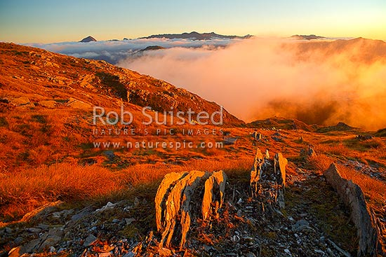 Alpine sunset over the Thomas Range, with sea mist rolling in. Thomas Valley in cloud at right and Marks Range in distance, Haast, Westland District, West Coast Region, New Zealand (NZ) stock photo.