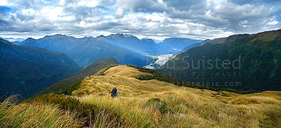 Tramper descending Midnight Ridge on the Thomas Range in tussock towards bushline, above a shaft of sunlight illuminating flats in the Haast River Valley. Panorama, Haast, Westland District, West Coast Region, New Zealand (NZ) stock photo.
